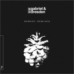 Gabriel & Dresden  - Gabriel & Dresden - Remedy (Remixed)  (2021)